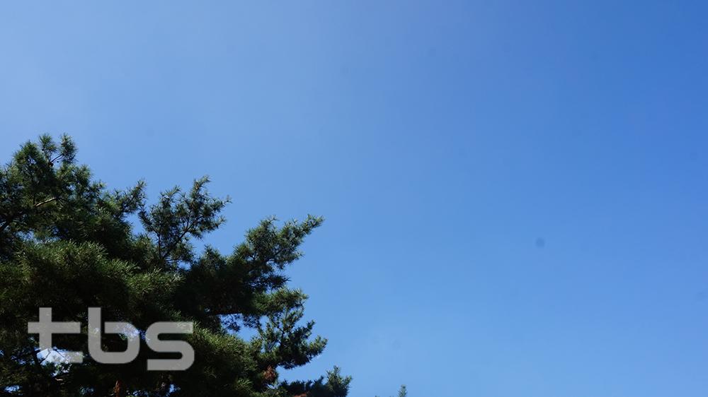 구름 한점 없는 하늘 <사진=tbs 조주연 기자>