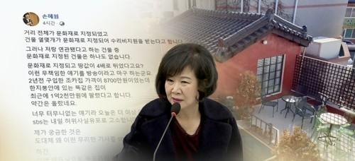 더불어민주당 손혜원 의원 <사진=연합>