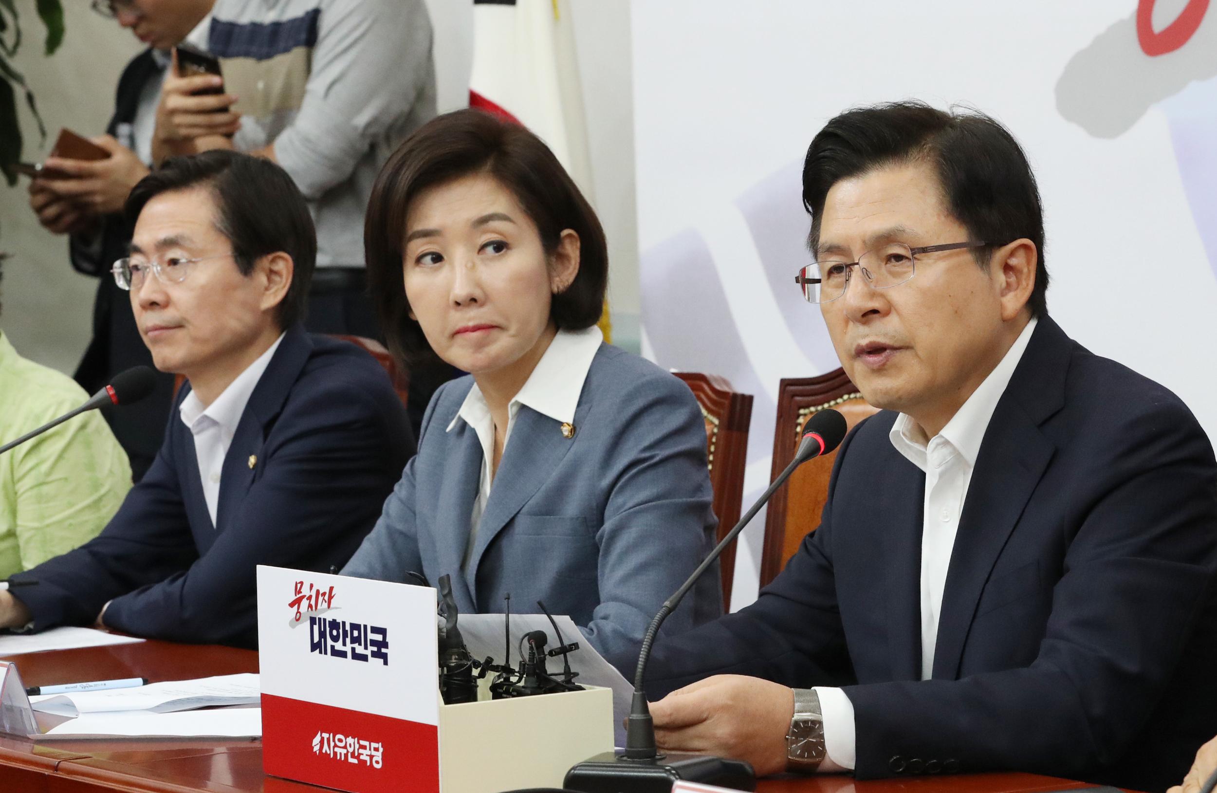 자유한국당 황교안 대표 <사진=연합>