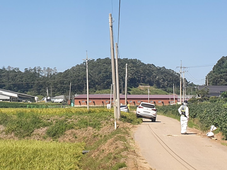 아프리카돼지열병이 발병된 경기 연천의 양돈농장 <사진=tbs>