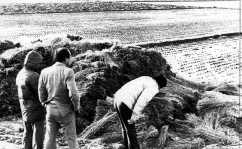 화성 5차 사건 현장 살펴보는 경찰 <사진=연합>