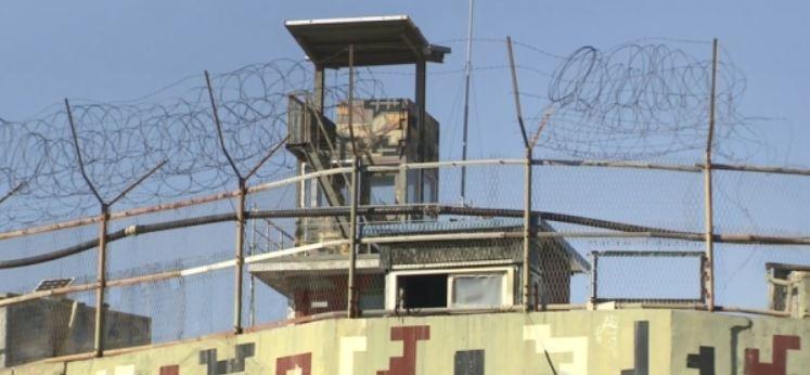 DMZ내 육군 감시초소(GP)