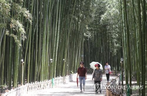 폭염주의보가 이틀째 이어진 지난해 5월 24일, 울산 십리대숲 더위식히기