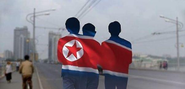 국내 입국 탈북민
