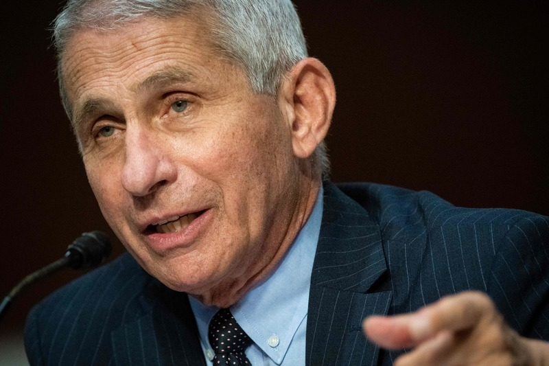 Anthony Fauci, director of the U.S. National Institute of Allergy and Infectious Diseases