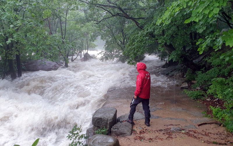 An official at Seokraksan National Park surveys an engorged stream during heavy rains on June 30, 2020.