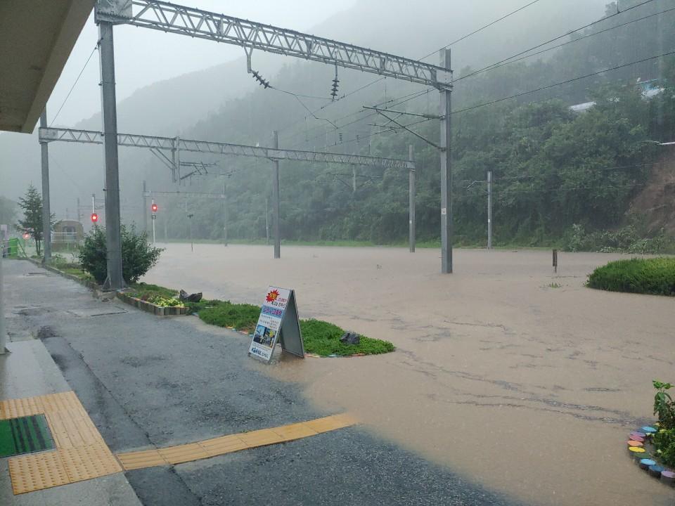 물에 잠긴 충북선 삼탄역 철도