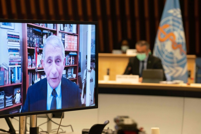 U.S. President Joe Biden's chief medical adviser Dr. Anthony Fauci speaks remotely during a World Health Organization executive board meeting on Jan. 21, 2020. (Photo: AFP-Yonhap News)