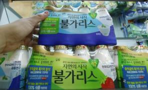 Namyang Dairy''s yogurt ''Bulgaris''