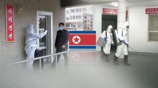 NK_antivirusefforts