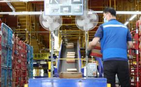 worker_parcel distribution center
