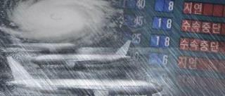 태풍으로 항공기 결항 (PG)