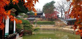 Changdeok Palace in the fall - Yonhap