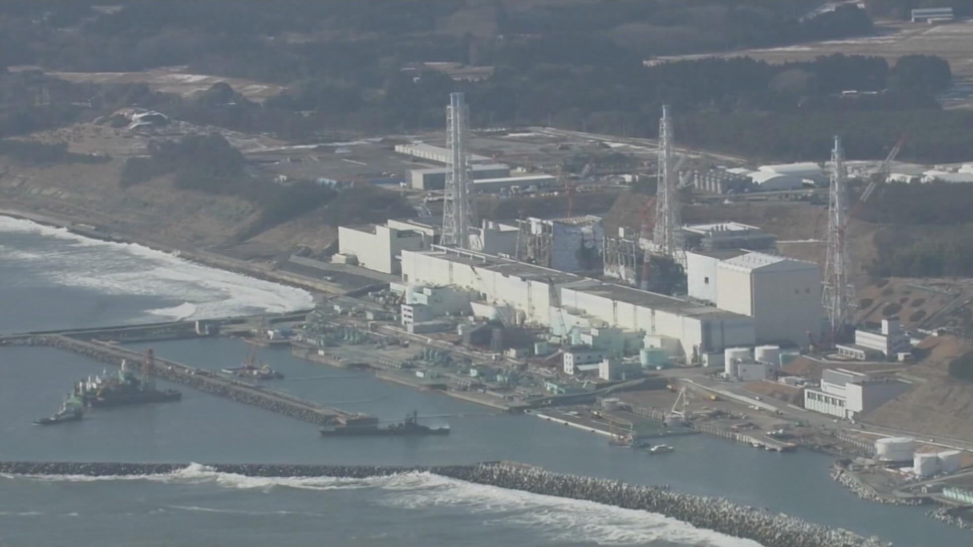 """후쿠시마산 가공식품 3만톤 5년동안 유통..""""국민건강 위협"""""""